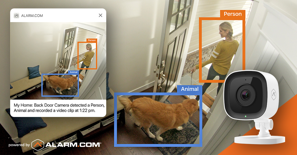 video monitoring identifying person and animal
